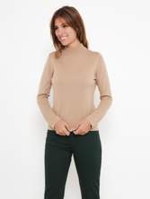 PULL COL CHEMINE CERFEUIL 5 coloris